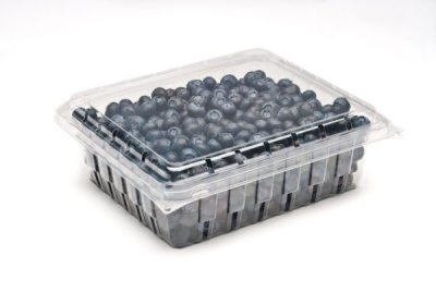 32 OZ BLUEBERRY CLAMSHELL - 168/CS